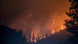 Wildfires: The West in Flames
